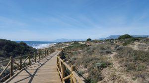 artola sand dunes