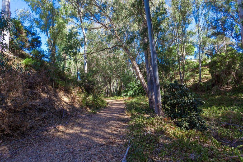 Calahonda Park walkway